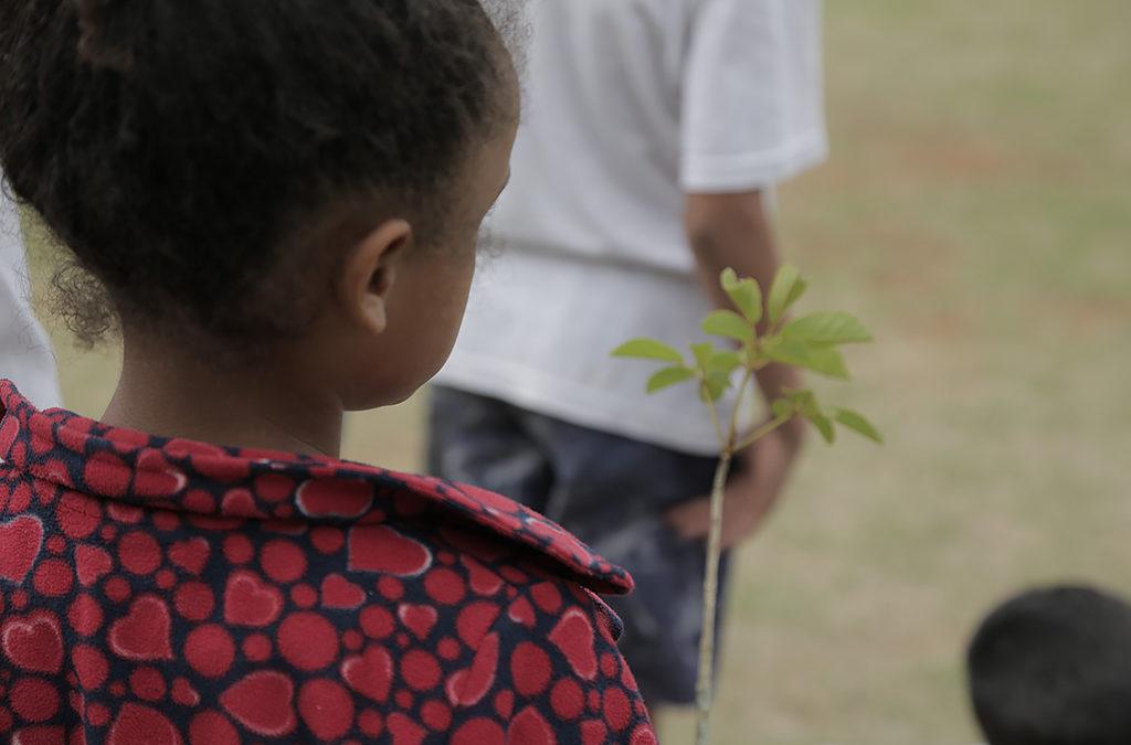 Projeto lança Aventura Socioambiental sobre Serviços Ecossistêmicos