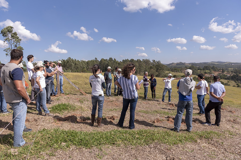 Produtores rurais visitam área recém-implementada com silvicultura de nativas, em Bragança Paulista (SP)