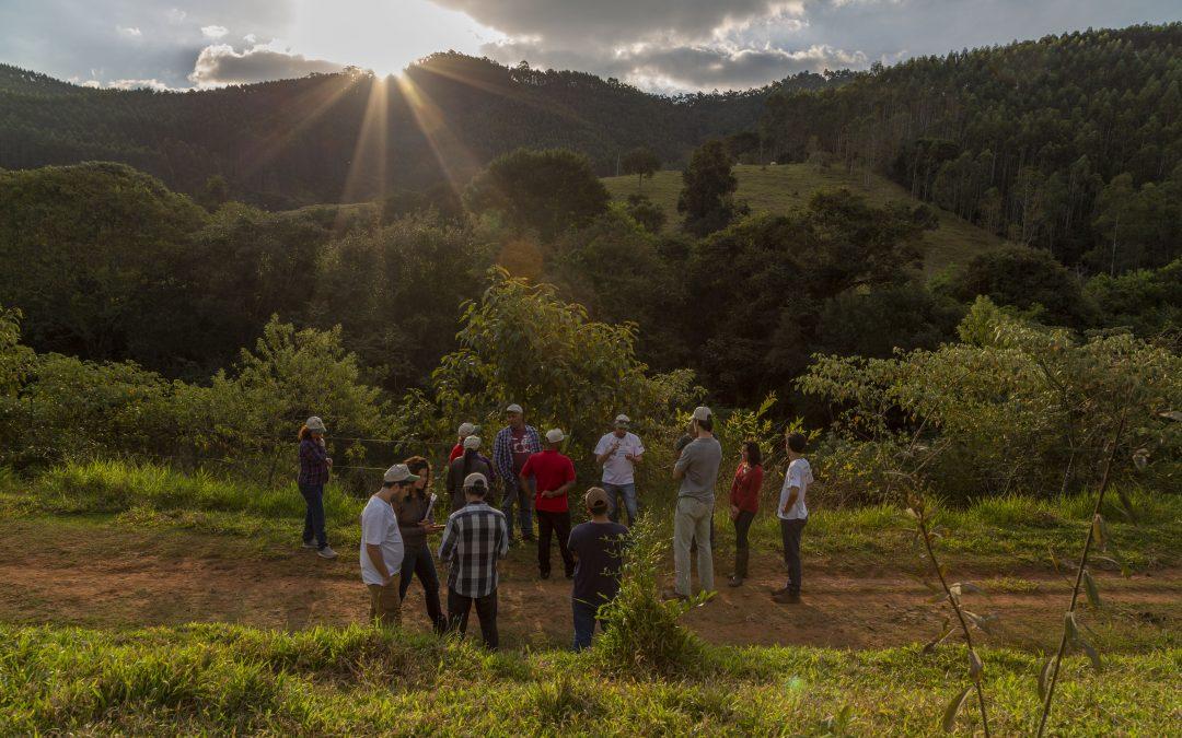 """Vaga de estágio nas áreasde produção rural sustentável, restauração florestal e manejo ecológico de pastagem no projeto""""Semeando Água"""""""